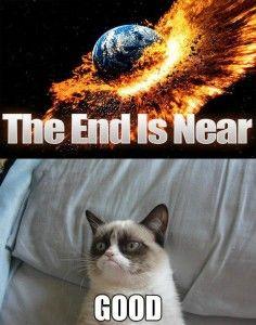 Grumpy cat's last words on doomsday