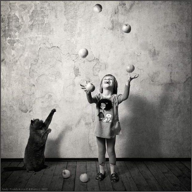 cat wants to juggle