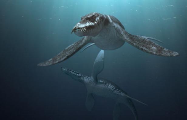 Liopleurodon and baby