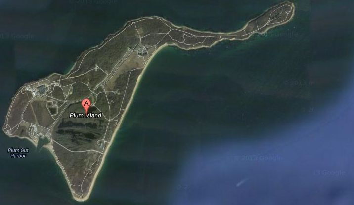 Plum Island and biological warfare